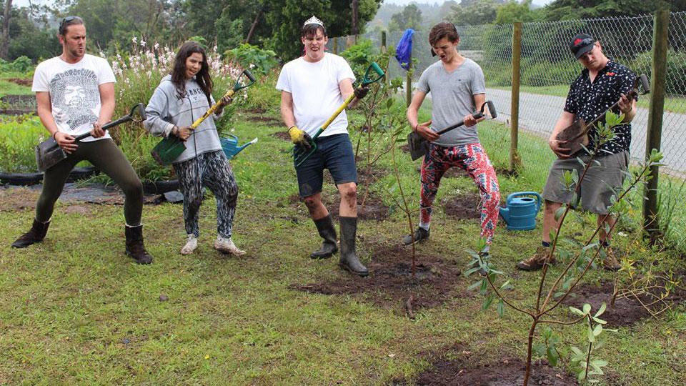 5 Reisende beim Bäume pflanzen im Garten