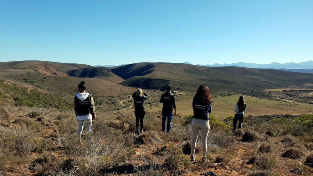 5 Reisende bewundern Ausblick über ein Tal